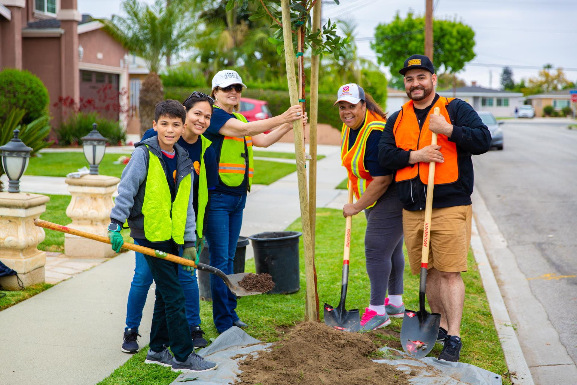 New Trees Coming to Downey