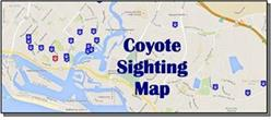 Coyote Sighting Map